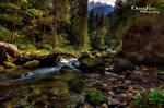 Heidis creek