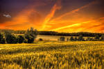 Orange Sky Over Lake Sawhill