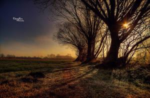 Sunstar by chevyhax