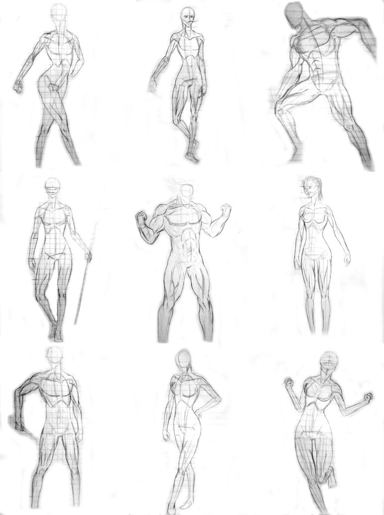 human anatomy - practices by Skyvvards on DeviantArt