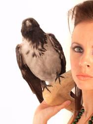 Aleksandra 05 - The Raven by mckatalyn