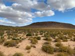 Karoo Landscape 2