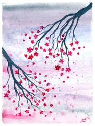 Sweet Sakura
