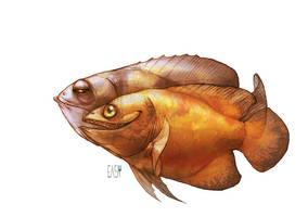 fishy by E-a-s-y