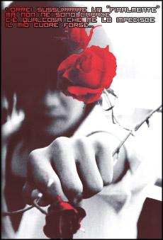 GazettE (Visual kei) - Página 4 Kai_and_a_rose_by_pocchan