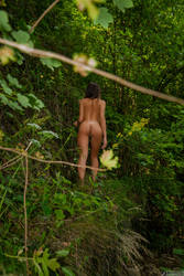 Naturist Spying by bonnyartcom
