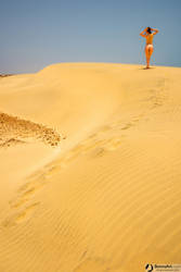Desert Muse by bonnyartcom