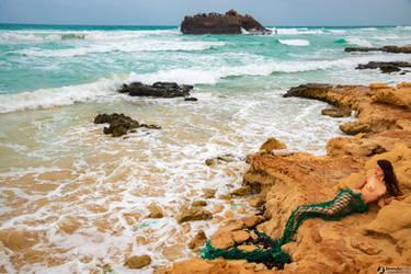 Nude Mermaid by bonnyartcom