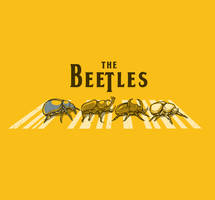 THE BEETLES by rhobdesigns