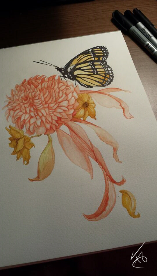 Monarch Watercolour by KaylaAnnStudio