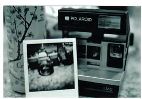 camera camera camera by gnar-sdsd-sxe