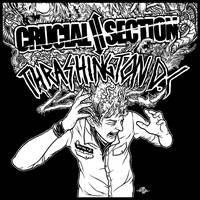 Crucial Thrashington - split