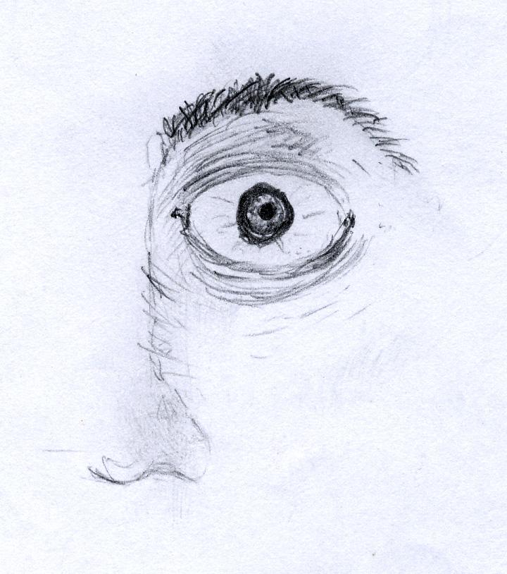 Eye by Eschenfelder