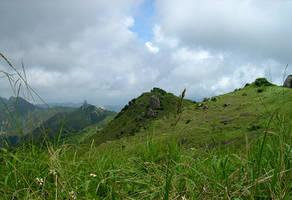 Another Landscape by Shobie-stock