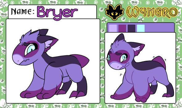 Bryer App