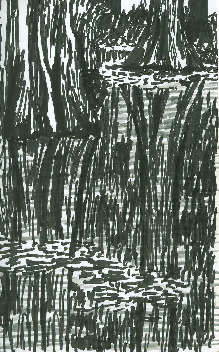 Cypress Trunks by DanielleDucrest