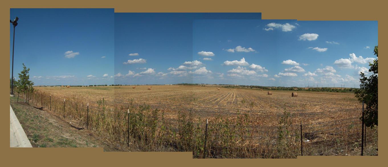 Hay Fields - San Marcos, TX by DanielleDucrest