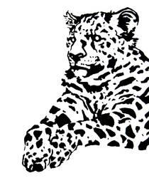 Leopard by nashbulloch1