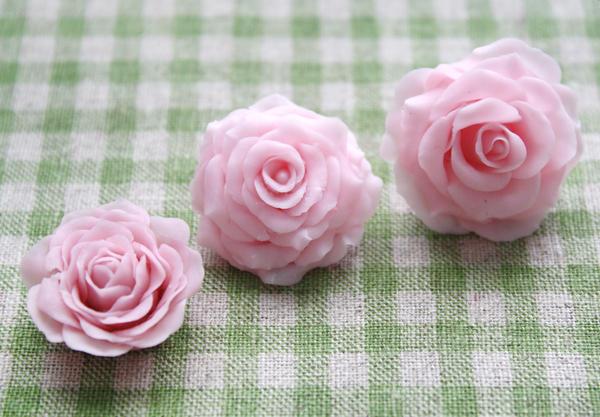 More Roses by li-sa