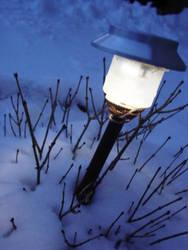 Light the Night by Echodapple