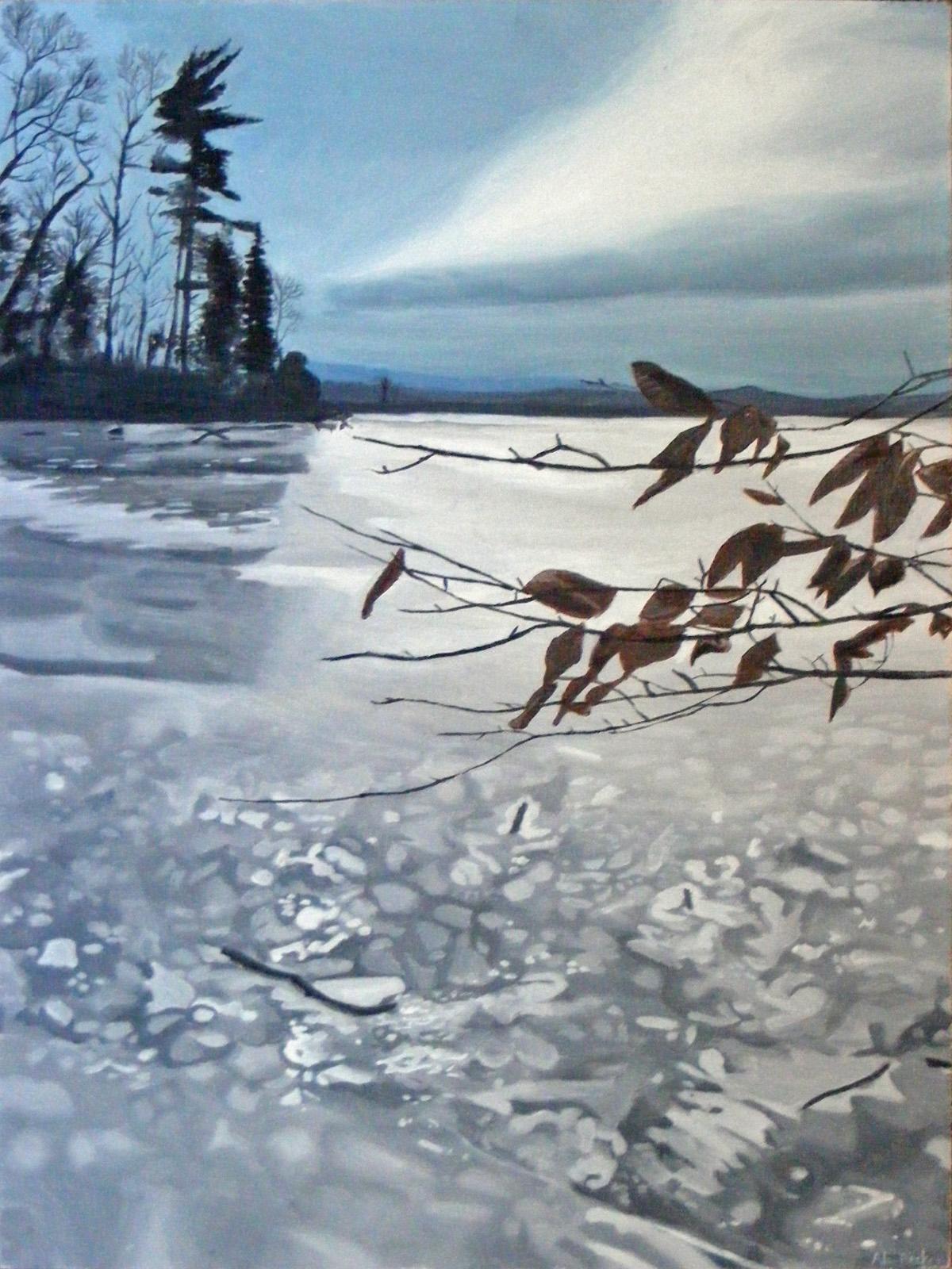 The Frozen Hudson by alanbecker