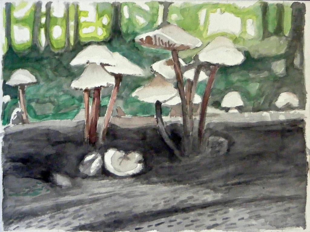 Mushrooms by alanbecker