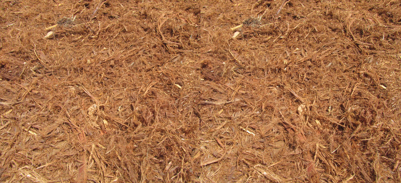 Stereograph - Mulch by alanbecker