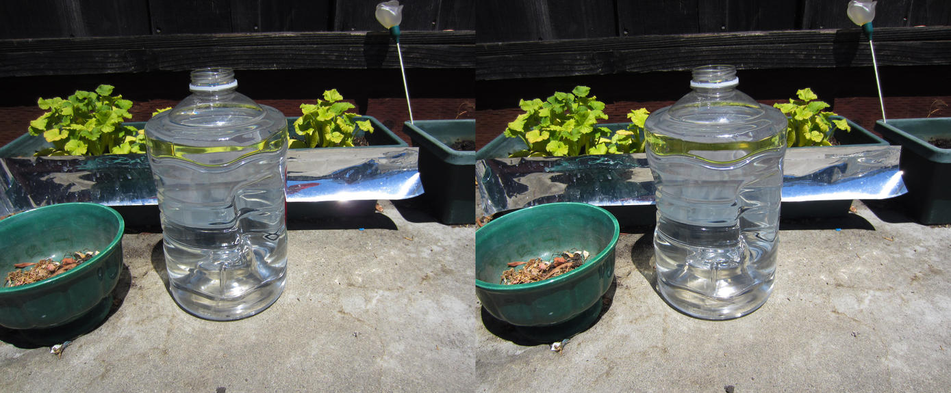 Stereograph - Water Jug by alanbecker