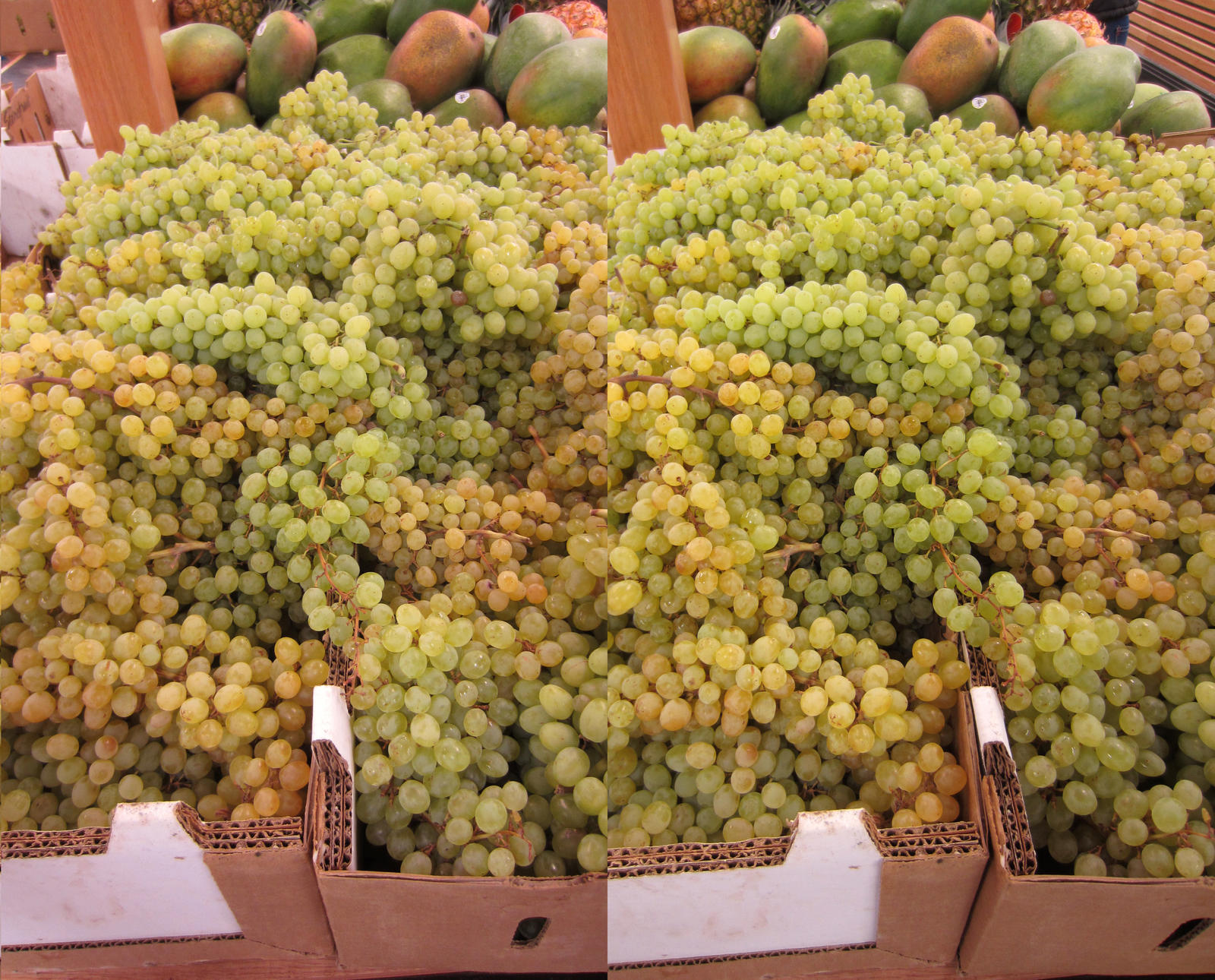 Stereograph - White Grapes by alanbecker
