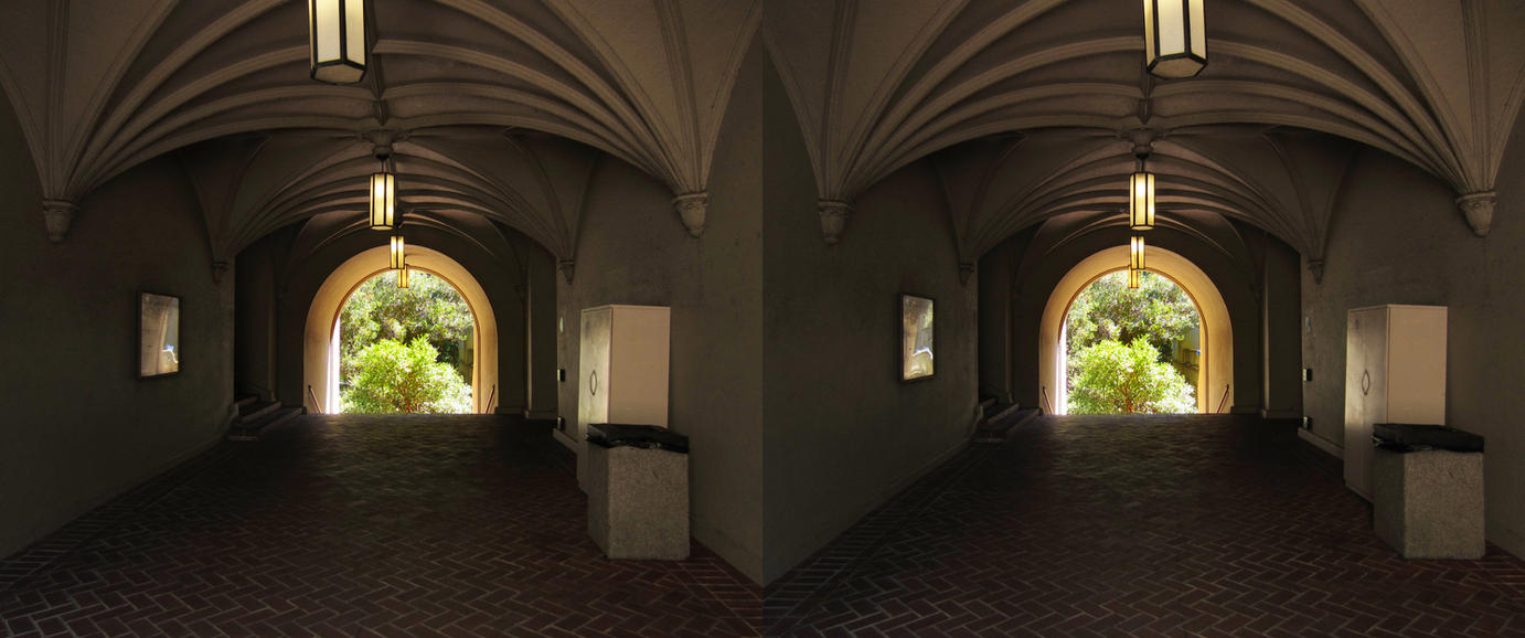 Stereograph - Vaulted Ceiling by alanbecker