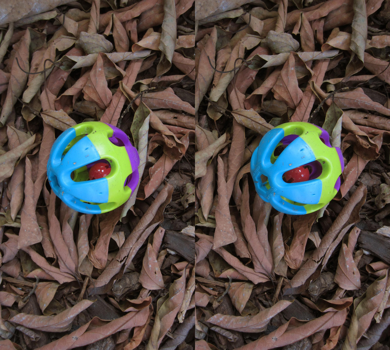 Stereograph - Ball in Leaves by alanbecker