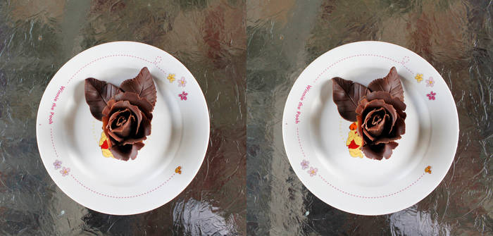 Stereograph - Chocolate Rose