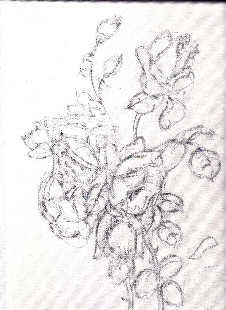 Flowers Pencil Sketch by