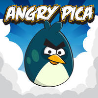 Angry Pica by pica-ae
