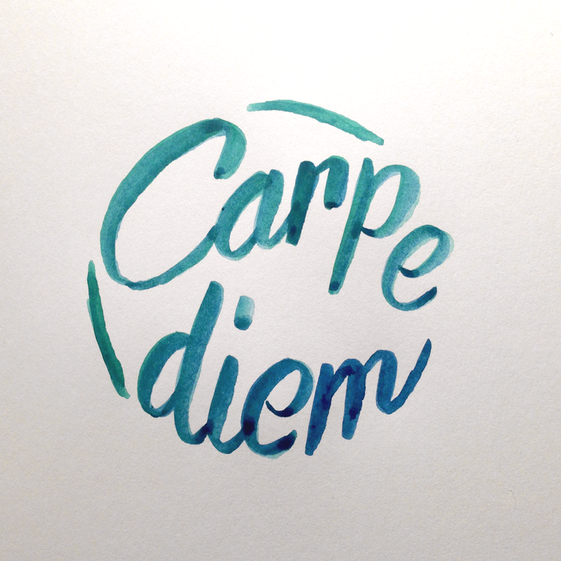 carpe diem Carpe diem hair studio is about maintaining the integrity of a salon environment  experience the expertise of a salon committed to serving its clients to complete.