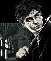 Harry Potter by DiegoBernardo