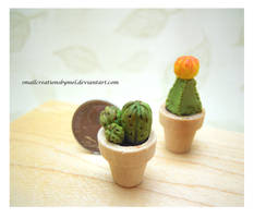 Cactus by SmallCreationsByMel