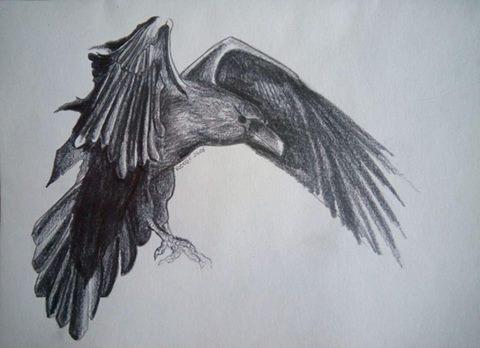 Raven by RedzicArt