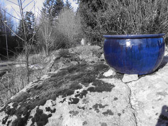 Blue Pot by fashoo