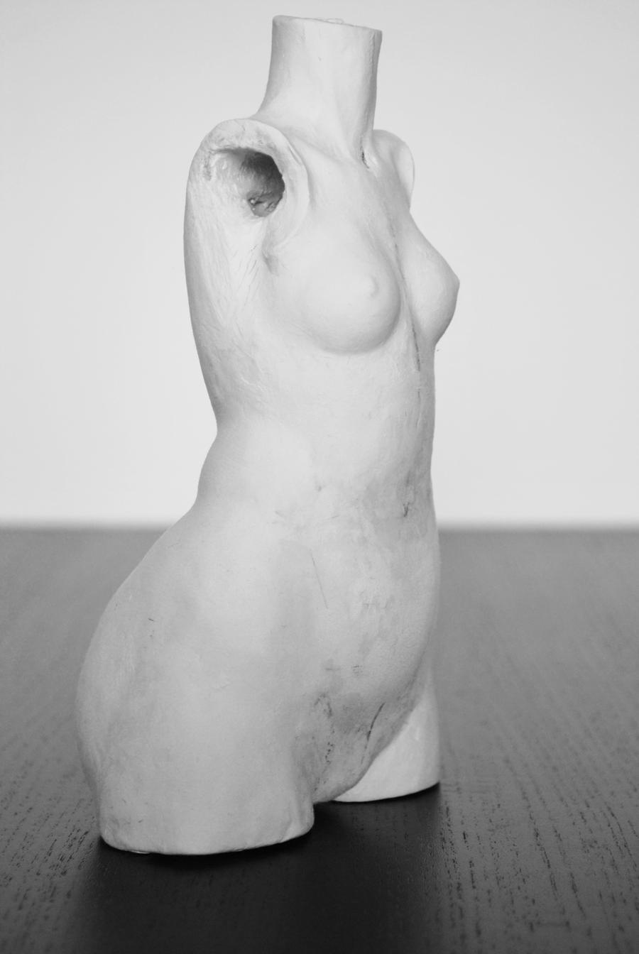 BJD Salome: More Torso 6 by FreakStyleBJD