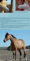 Horse plush tutorial part 1