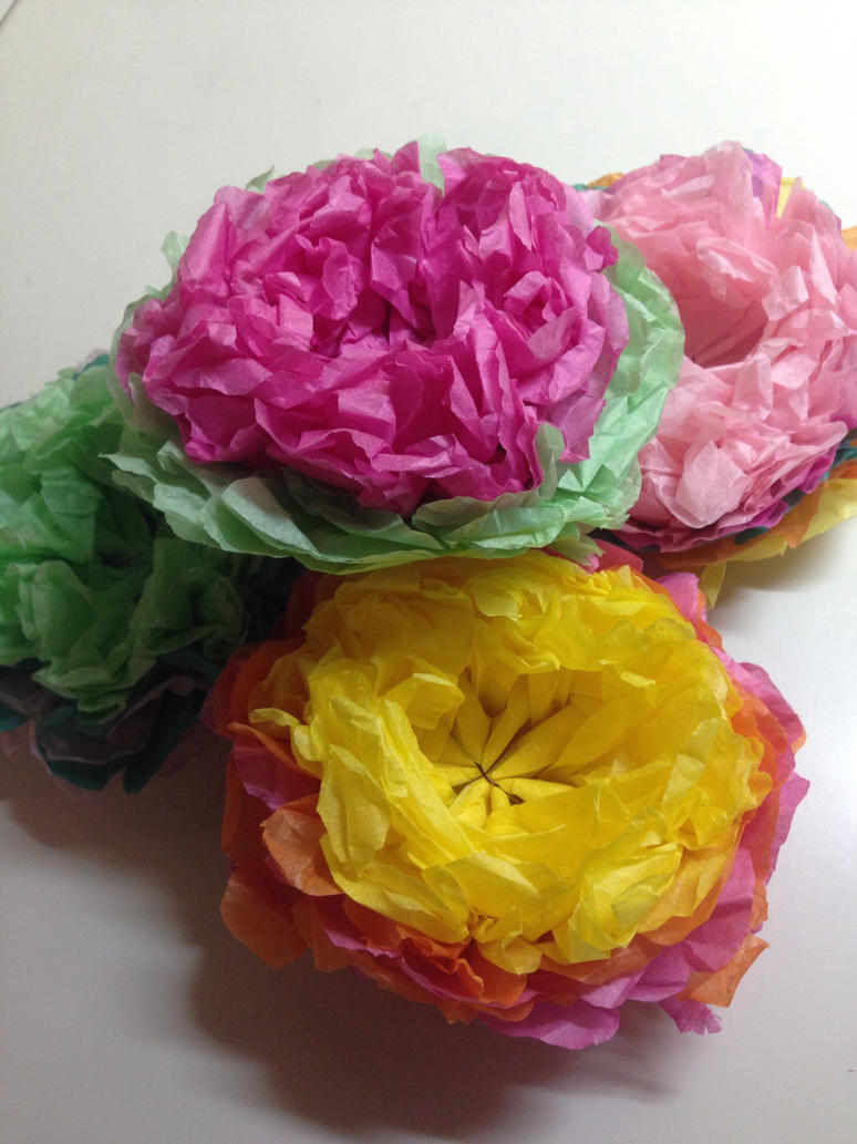 Tissue Paper Flowers by SnowGirl134