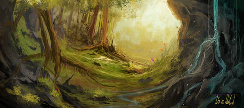 Forest Scenery by TWPictures