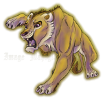 Scaredy lioness