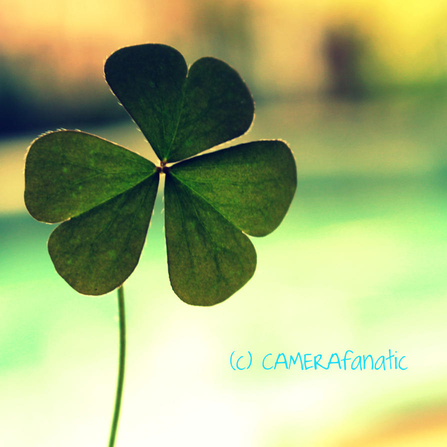 Take a shot at luck by CAMERAfanatic