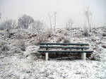 Winter: lonely bench
