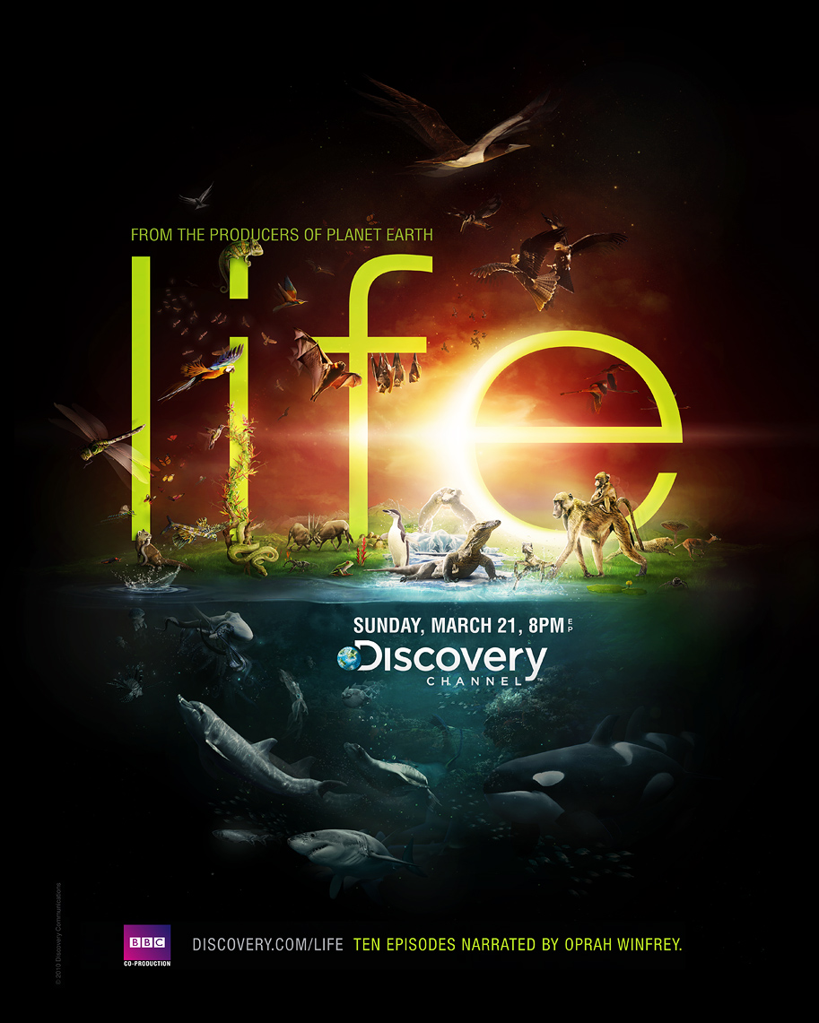 Discovery Channel - Life