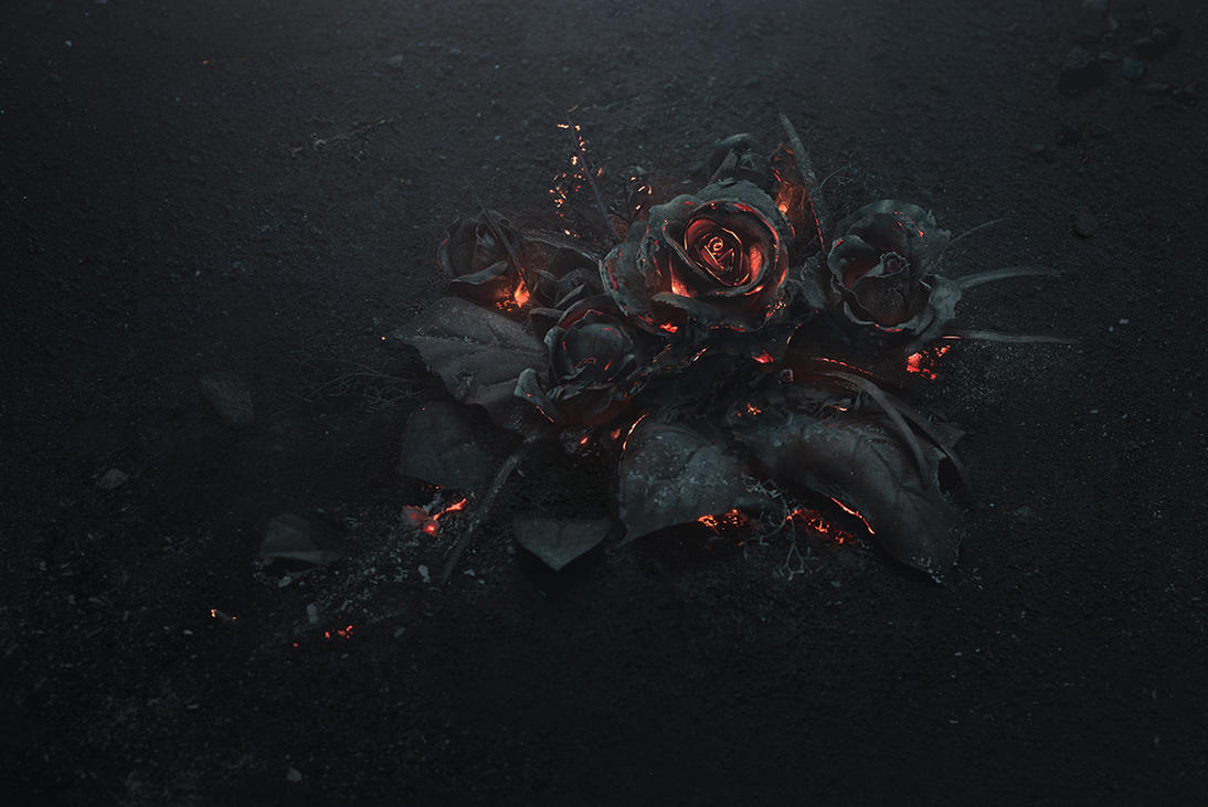 The Ash - Future 'Evol' Cover Art by he1z