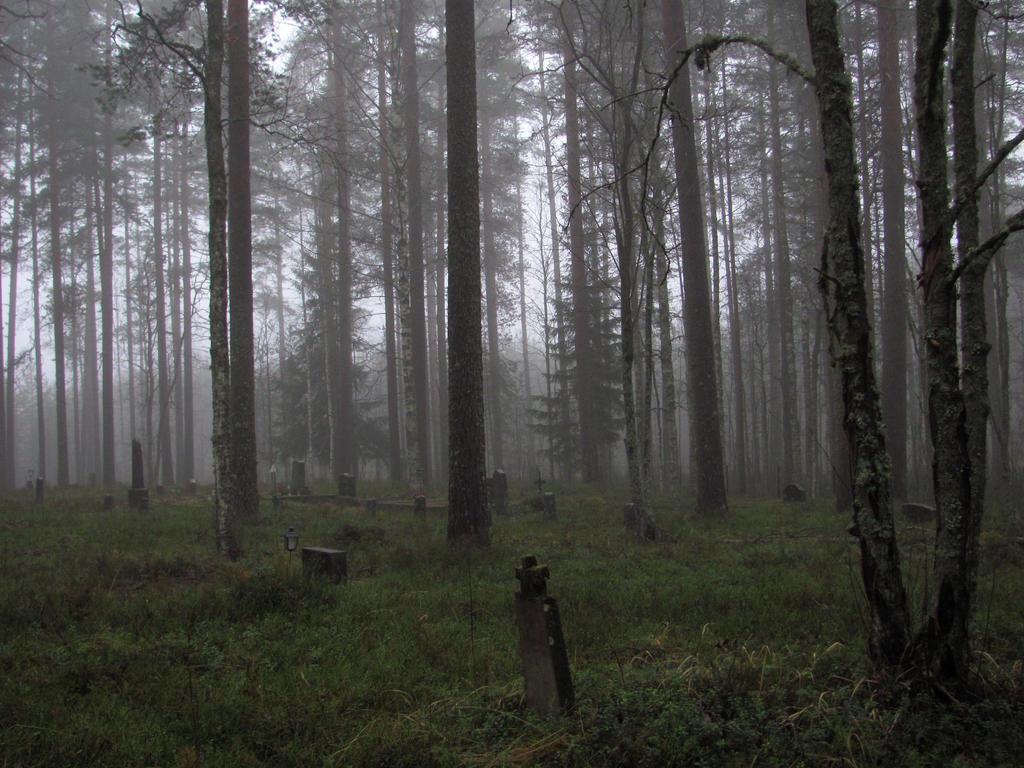 TrekLens | Misty Graveyard Photo