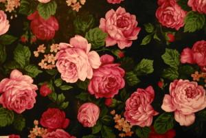 rosetheflower's Profile Picture